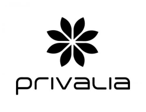 ¿Qué es Privalia y como funciona su outlet online?